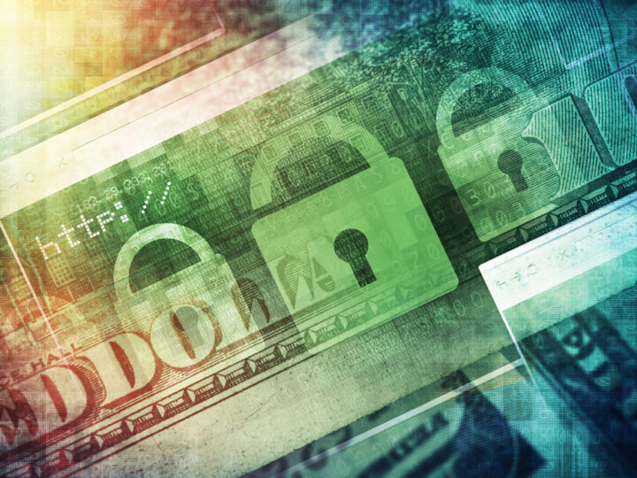 Counting the Cost: CPAs and Cybercrime