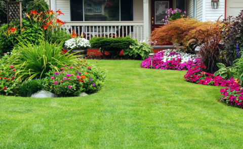 How to Boost a Property's Value with Lawn Care